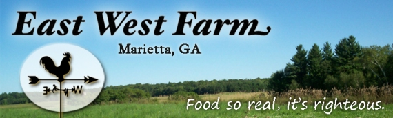 East West Farm Header